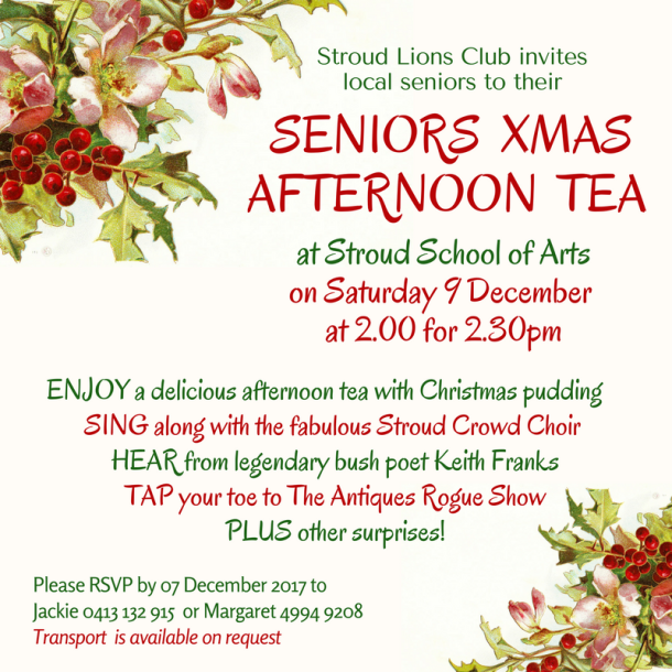 seniors christmasafternoon tea